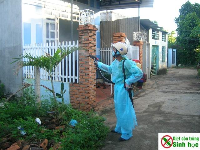 Dịch vụ phun xịt thuốc diệt muỗi