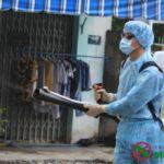 diệt mối côn trùng tại Đồng Nai