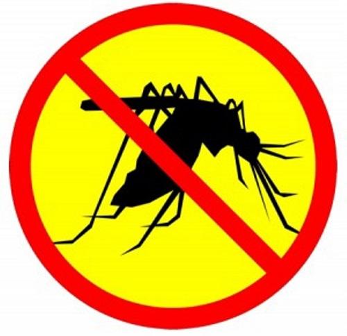 diệt muỗi tại Hải Dương
