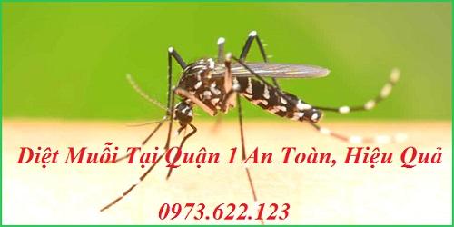 Địa chỉ phun thuốc diệt muỗi tại Quận 1