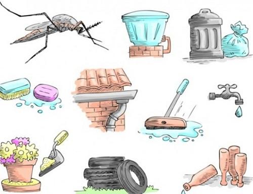 Quy trình phun thuốc muỗi được tiến hành nhanh chóng