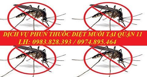 3 địa chỉ phun thuốc muỗi tại Quận 11