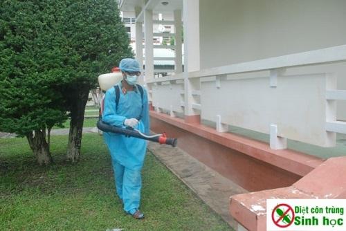 Nên phun thuốc muỗi định kì để đảm bảo hiệu quả tiêu diệt