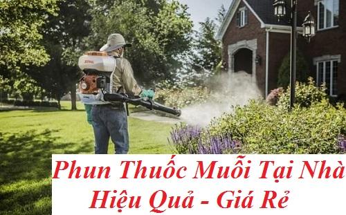 Phun thuốc diệt muỗi tại Quận 6.